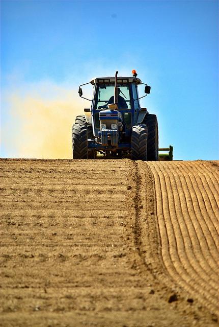 Tracteur labourant un champ et nimbé de poussière occre