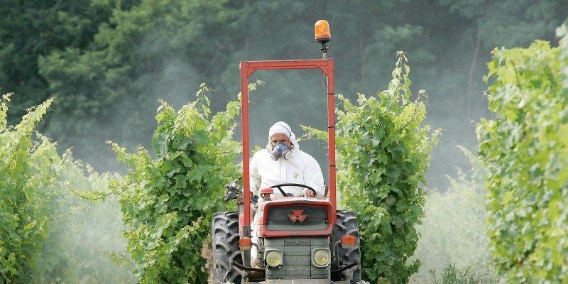 Agriculteur en combinaison de protection intégrale sur un tracteur au milieu des vignes
