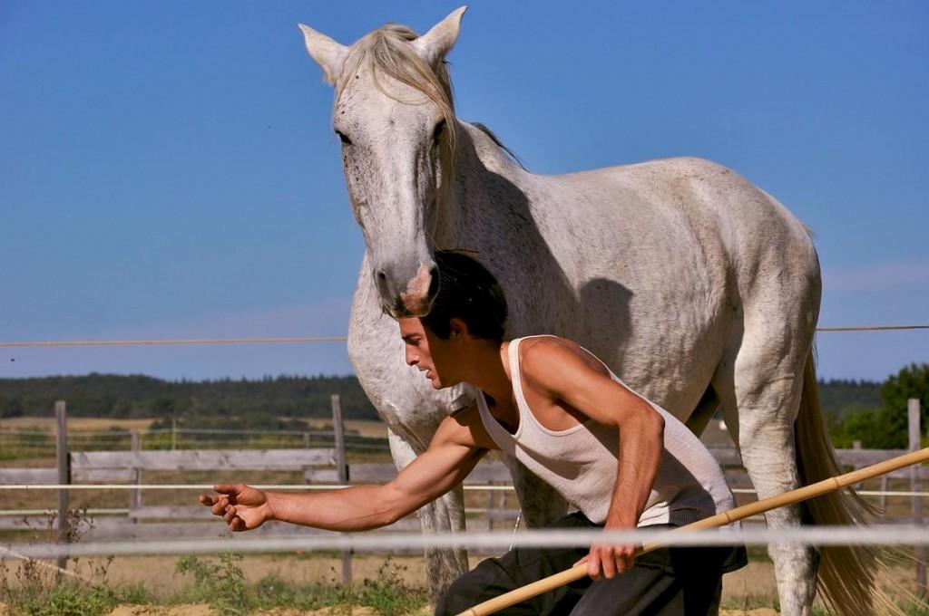 cheval_magique2