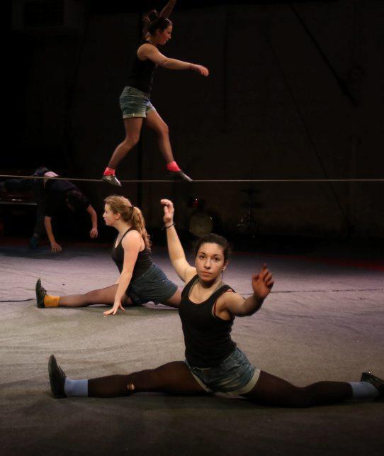 Le cirque en Gascogne