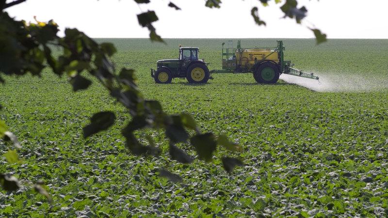Les pesticides, un fardeau économique