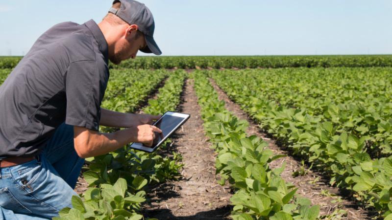 « Le numérique doit améliorer la productivité des exploitations agricoles »