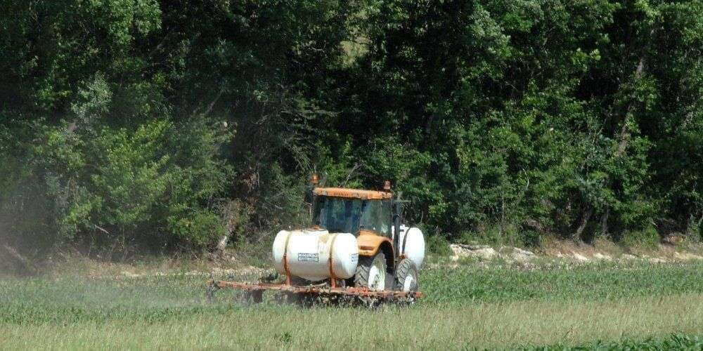 Épandage de semences toxiques en Lot-et-Garonne: l'agriculteur condamné