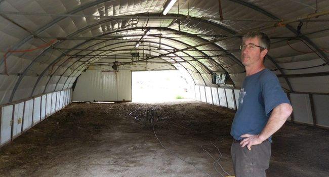 Un éleveur de canards devant son hangar vide