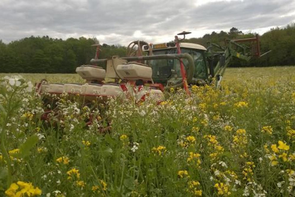 Champs fleuri avec tracteur chargé de produits phytosanitaires