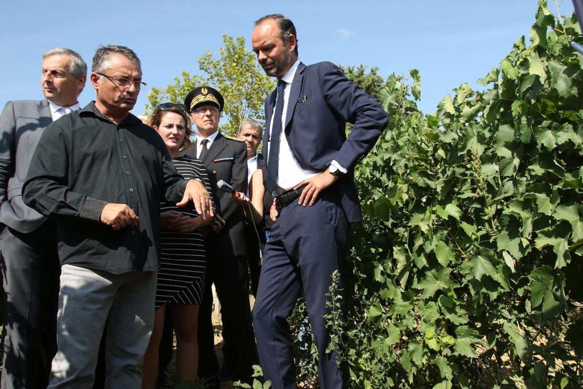 Le premier ministre dans les vignes