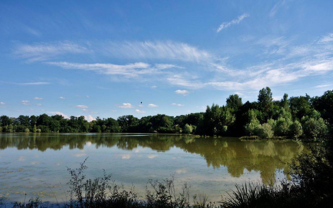Relance de l'irrigation : la lacune des recherches