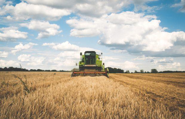 Production alimentaire : «Nous avons divisé par 25 notre efficacité énergétique»