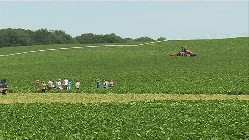Les agriculteurs biologiques du Gers ripostent!