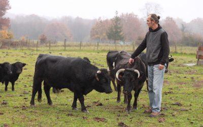 L'abattage à la ferme, le combat d'un éleveur pas comme les autres